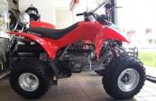 HONDA TRX 250     (1)