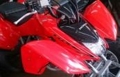 HONDA TRX 250  (2)