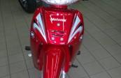 MOTOMEL DLX 110  (2)