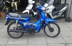 MOTOMEL GO 110