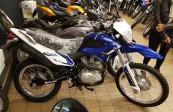 MOTOMEL SKUA 250 PRO  (1)