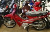 MOTOMEL DLX 110  0KM  (1)