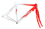 venzo-ruta-phoenix-cuadro-blanco-rojo (1)