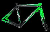 venzo-ruta-raphael-cuadro-negro-verde