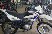 MOTOMEL SKUA 150 V6 2019 V6 6800KM (6)