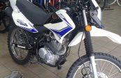 MOTOMEL SKUA 150 V6 2019 V6 6800KM (8)